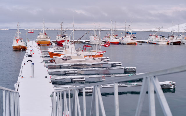Fishing Fleet in Bugøynes